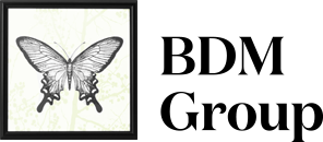 BDM Group srl